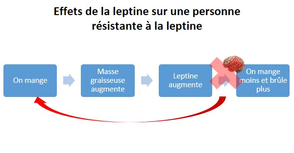 6 astuces pour traiter la résistance à la leptine et