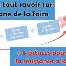 leptine-hormone-perte-poids-maigrir-obesite